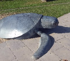 Thursday Island turtle sculpture