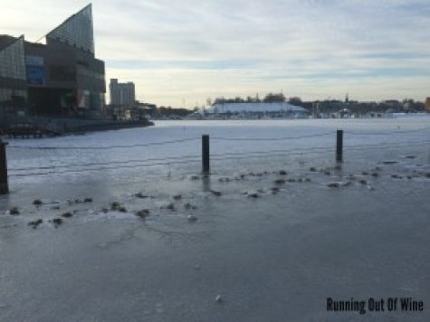 the baltimore harbor frozen over