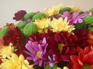 Пъстри хризантеми (2)
