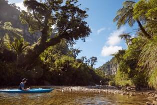 Ausflug, Natur, Regenwald, Tour, Tagesausflug, Punakaiki, Palmen, Reise, Urlaub, Reiseblog, Ronnie, Miles and Shores, Neuseeland, Suedinsel, Kayak, Kayaking, Kanu, Kayaktour, alleine, einzel