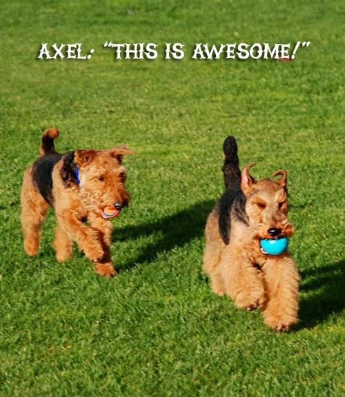 Miles & Axel