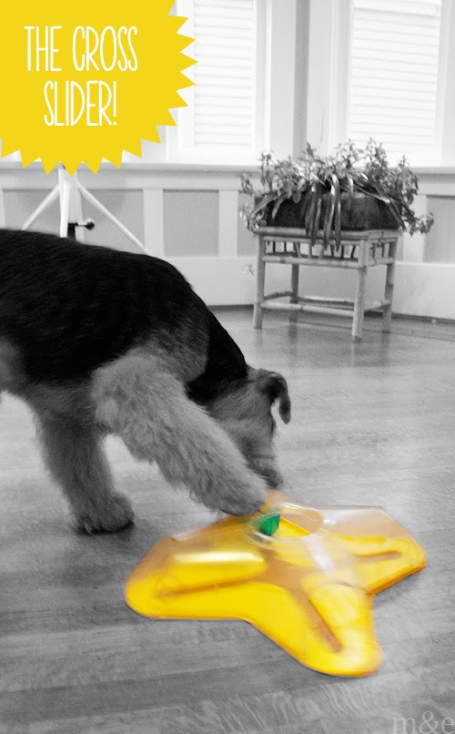 Puzzle Games for Dogs: The Cross Slider