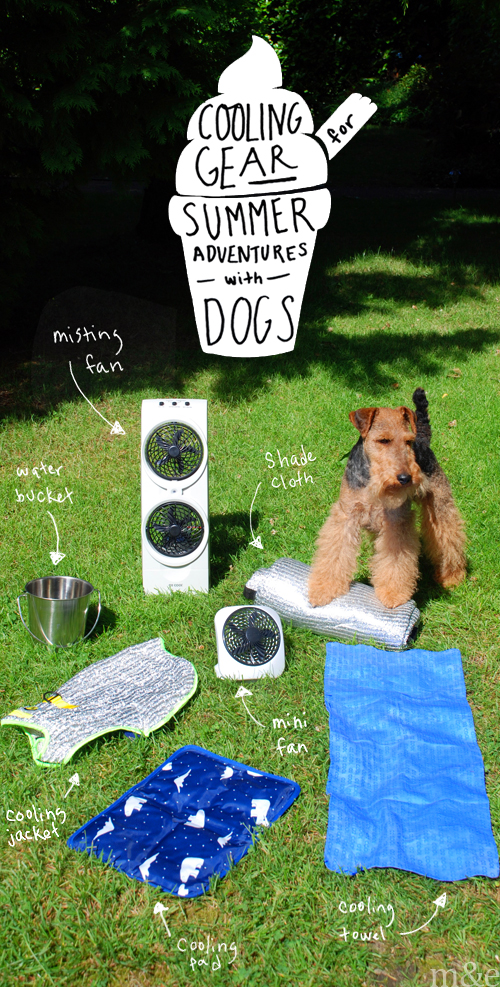 <b>Cooling Gear</b> for Summer Adventures with Dogs
