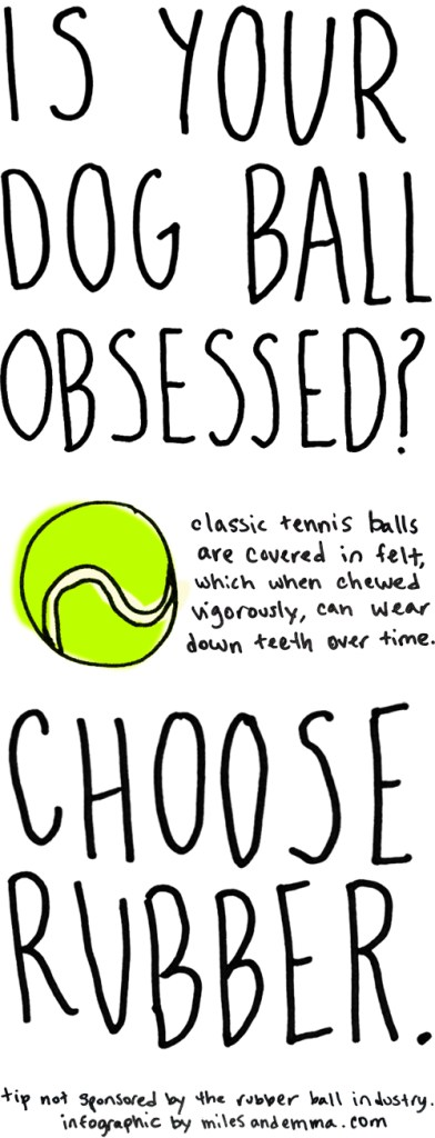 Is Your Dog Ball-Obsessed? </br>Here's a Helpful Tip!