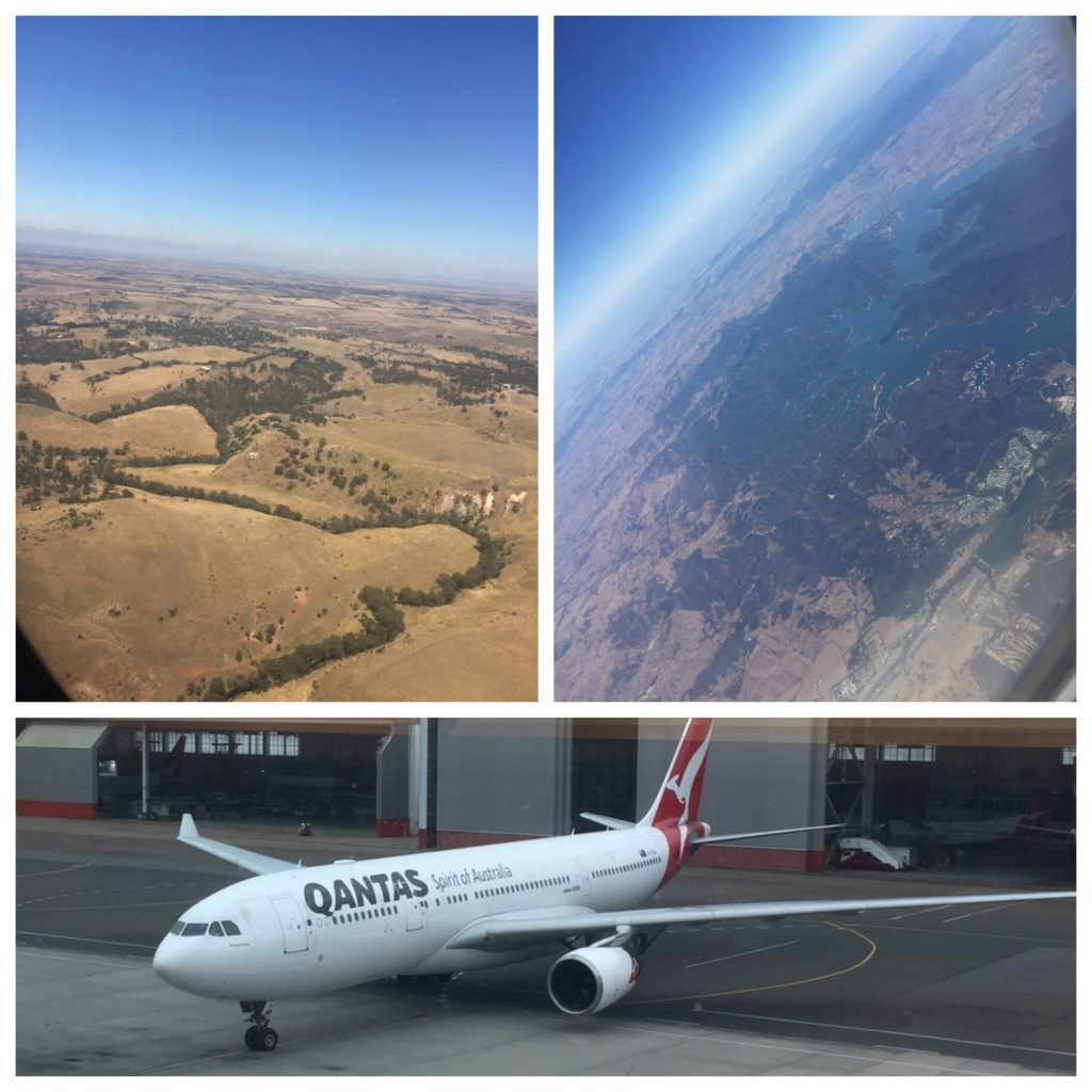 Collage_Fotor QF A330 5