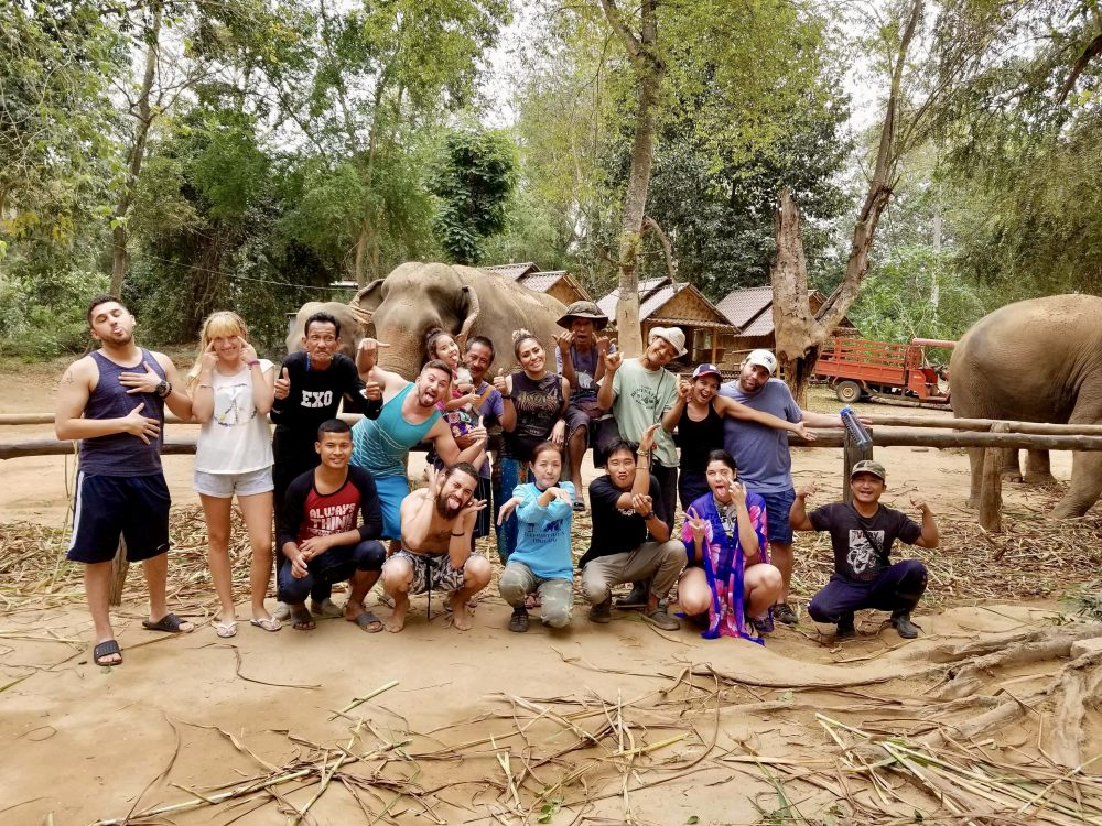 Group pic elephant haven