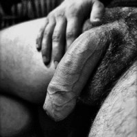 Hooded, veiny cocks are as masculine as you can get.