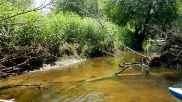 Crawfish River North Branch