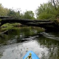 Mecan River