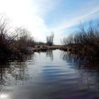 Door Creek