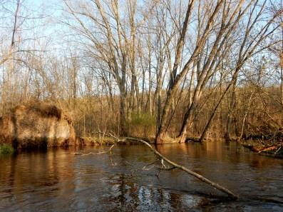 Sugar Creek