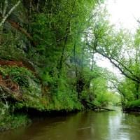 Pecatonica River Dodge Branch