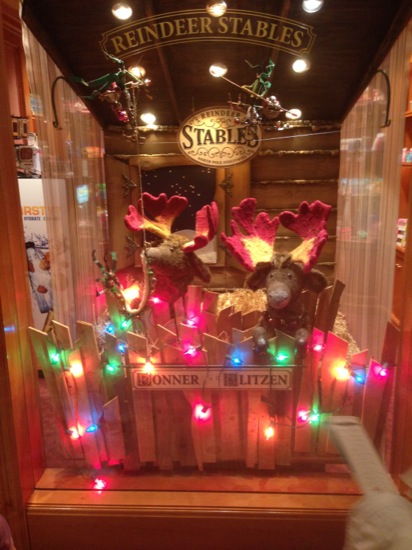 Reindeer Stables window