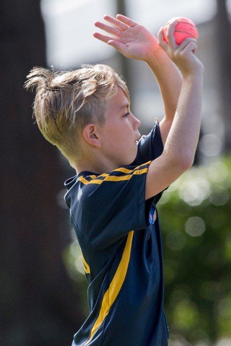 Blitz Cricket, Milford Primary School, Thursday, March 23, 2017.Photo: David Rowland / One-Image.com