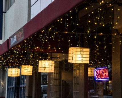 Lights and Sushi