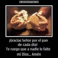 ¡Gracias Señor por el pan de cada día! Te ruego que a nadie le falte mi Dios
