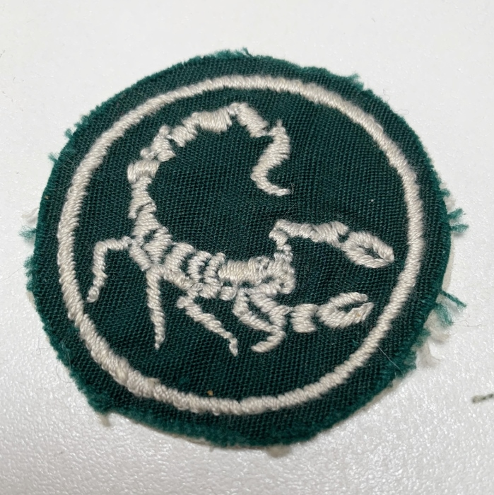 South Africa Hunter Group Paratrooper Trainees Special Forces Arm Flash Badge