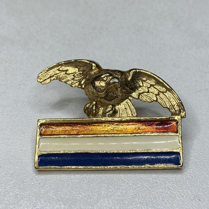 Croatia Army Croatian Air Force Wartime Eagle Badge Wing Homeland war military 11