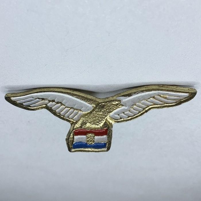 Croatia Army Croatian Air Force Wartime Eagle Badge Wing Homeland war military 4