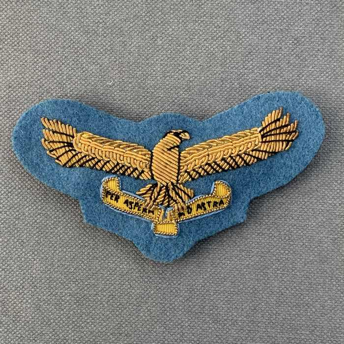 SAAF South Africa Airforce Colonel and Brigadiers Wing Cap badge insignia 1959