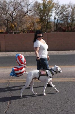 Lady walking with dog in parade