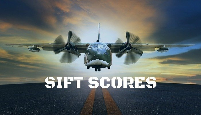 SIFT Scores and What They Mean
