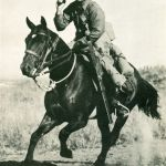 War Horses — Cavalry's Contribution to WWII