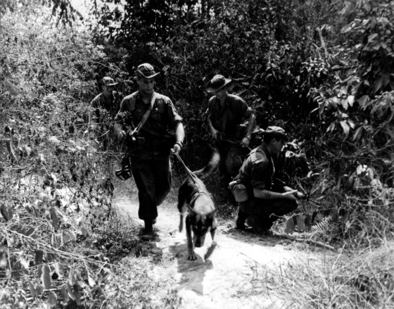 U.S. troops on a search and destroy mission somewhere along the Ho Chi Minh Trail. (Image source: WikiCommons)