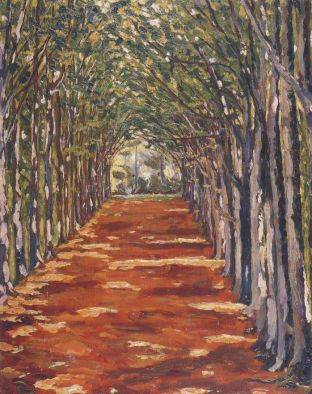 The Cathedral Avenue in Hackwood Park. (Image source: http://www.museumsyndicate.com/Public Domain)