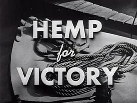 Smoke Screen -- 'Hemp for Victory' was part of Washington's PR blitz to get American hooked on the benefits of hemp. (Image source: Youtube.com)