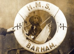 HMS Barham ring and dog mascot, image collected by George Malcolmson printed by Sadler and Renouf. (Image courtesy of the NMRN)