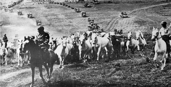 Operation Cowboy – How American GIs & German Soldiers Joined Forces to Save the Legendary Lipizzaner Horses in the Final Hours of WW2