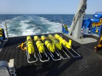 The U.S. Navy maintains a large fleet of ocean gliders for environmental measurement.