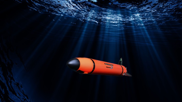 Navigating the Future of Undersea Autonomy – Riptide Year-One