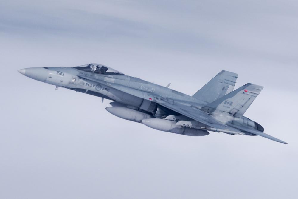 Royal Canadian Air Force CF-18 Hornet