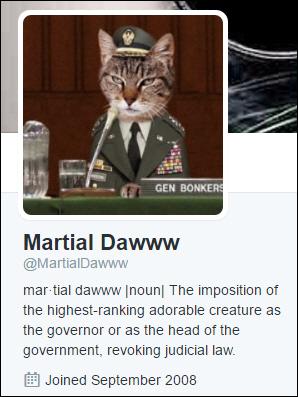 johnson-martial-daww