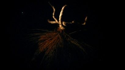 Sirius Passet, film still