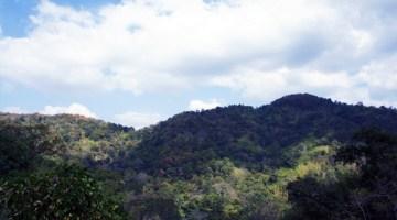king-taksin-national-park