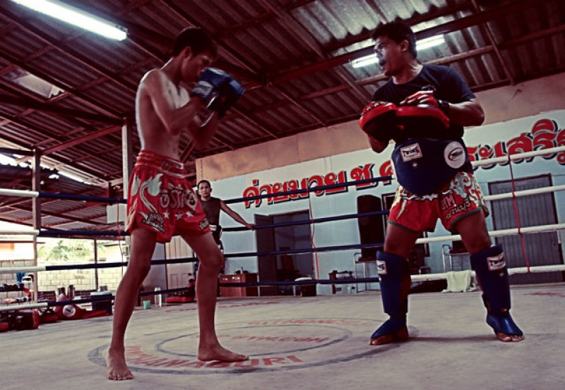muay thai blog