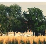detroitp-abandoned-building