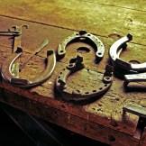 harrow-horseshoes