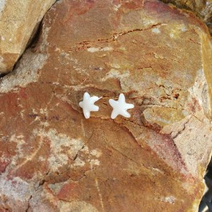 Star Earrings - Milk Vine Jewelry