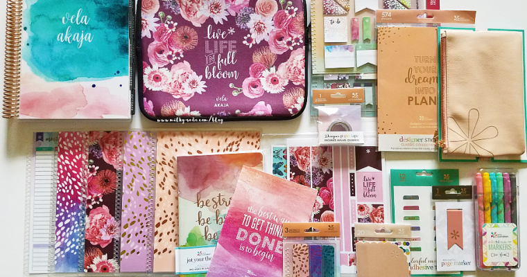 Erin Condren 2017/2018 LifePlanner & Accessories Haul!