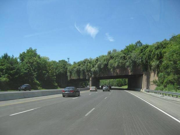 i-78-new-jersey-animal-bridge-wildlife-crossing-overpass-1