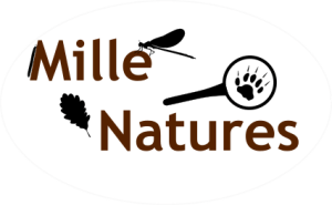 Logo Mille Natures rond