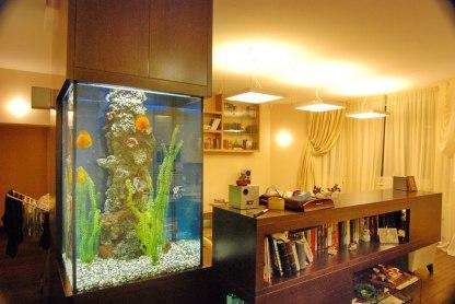 Дизайн интерьера квартиры. Аквариум и книжная стойка