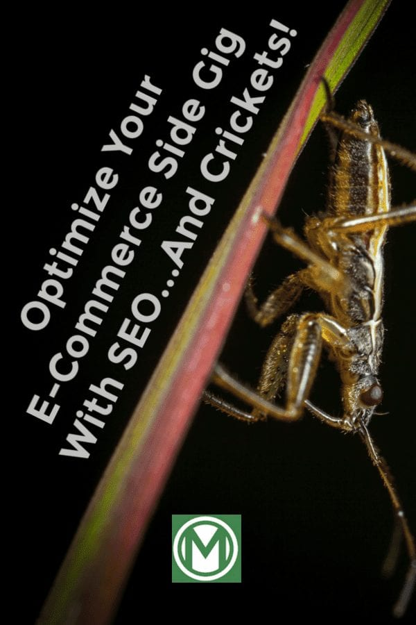 Are you looking to optimize your side hustle with SEO? Are you looking for organic traffic? Check out this niche site, and learn how to sell crickets online!