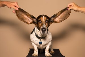 Your Hearing Affects Your Heart | Millennials with Meaning