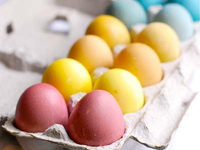 Children's Easter Egg Natural Dye Workshop