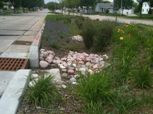 Prepare your yard for hurricane season with clear drainage area